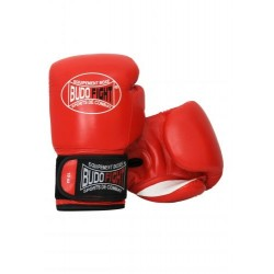 GANTS BUDOFIGHT FALCON