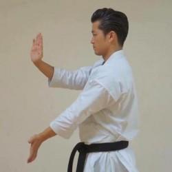 Karategi Tokaido Kata Master Athletic