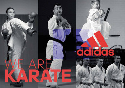 we are karate